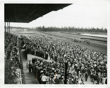 NEWS PHOTO: HIALEAH RACE HORSE PARK OPENS (1941)