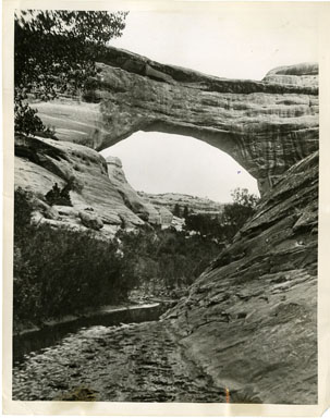 NEWS PHOTO: AUGUSTA NATURAL BRIDGE (1927) KEYSTONE VIEW