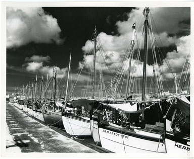 NEWS PHOTO: COMMERCIAL FISHING FLEET / TARPON SPRINGS SPONGE FLEET (1965)
