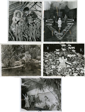 NEWS PHOTO: FLOWER SHOW - 5 VINT STILLS 1940-53 DETROIT